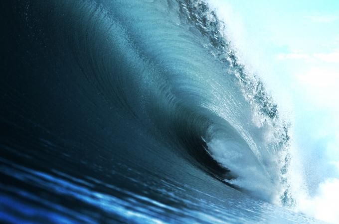 photo de surf 5694